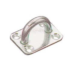 Stainless steel plate with ring